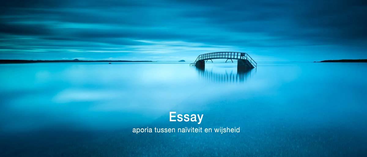 Permalink to:Essay